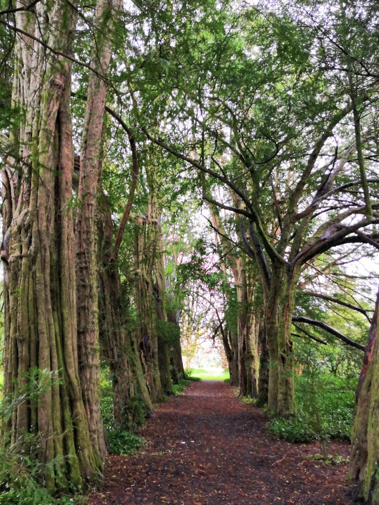 Top Things to do in Waterford - Lismore Castle Gardens