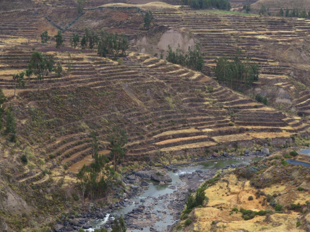 Visiting the Colca Canyon: Pre Incan Terraces