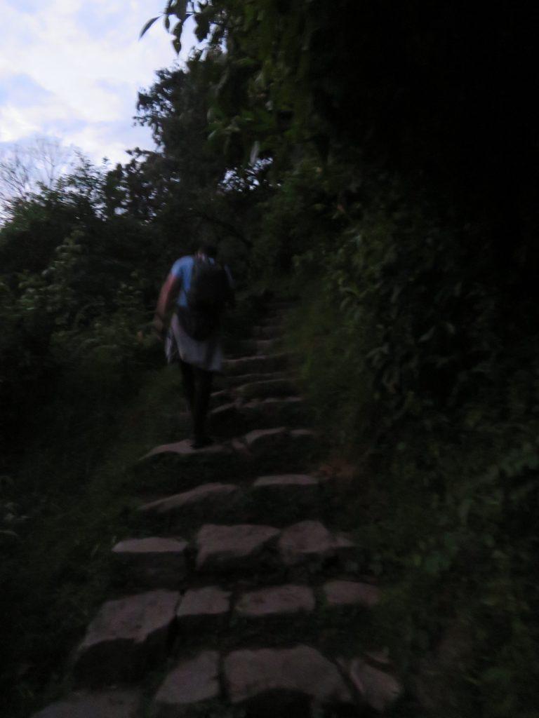 Visiting Machu Picchu | Machu Picchu Steps