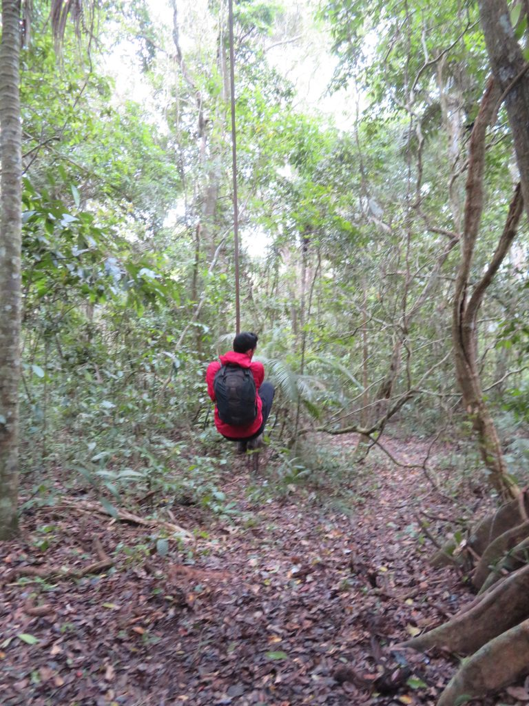 Amazon Rainforest | Tarzan Swing