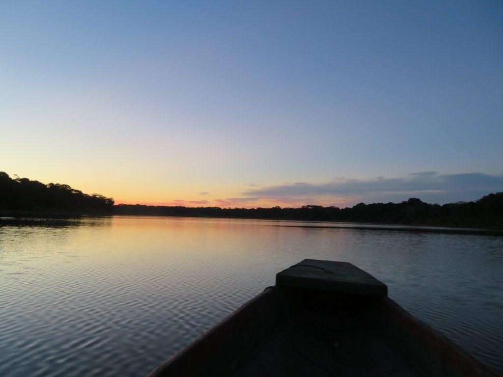 Amazon Rainforest | Sunset