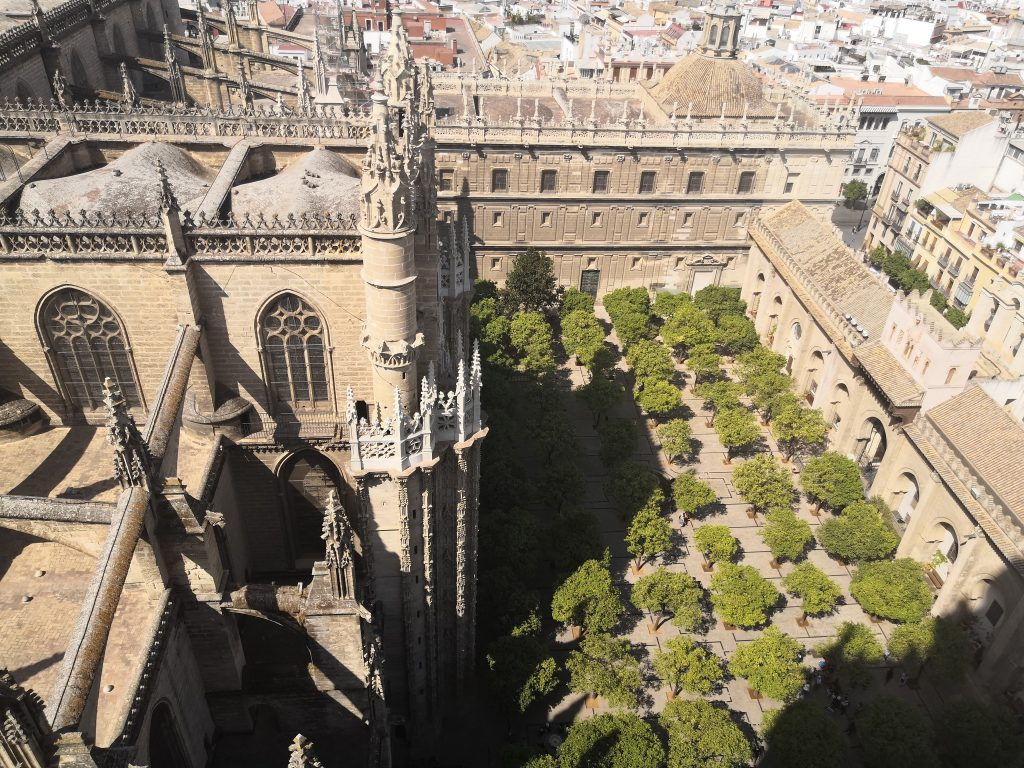 Seville Travel Guide | La Giralda views