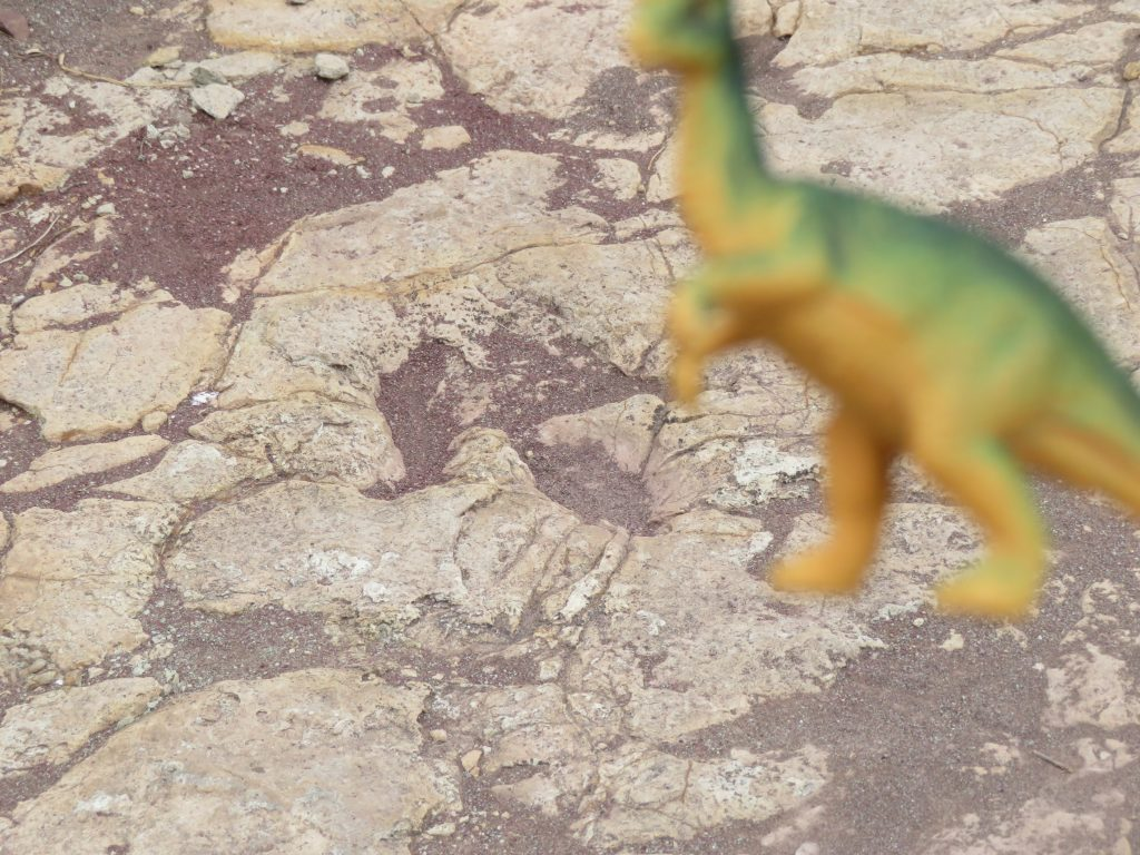 Toro Toro National Park   Dinosaur Footprints
