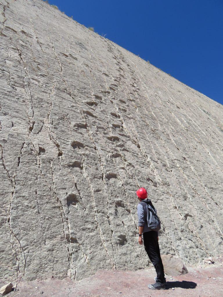 What to do in Sucre Bolivia | Cretacico Park